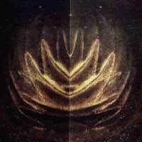 zoom lotus